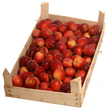 Äpple i trälåda,